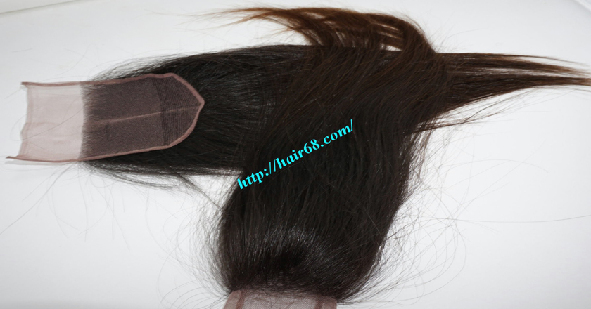 20 inches Free Part Lace Closure Vietnamese Hair 1