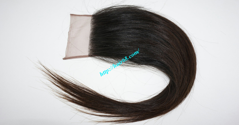 20 inches Free Part Lace Closure Vietnamese Hair 3