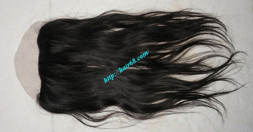Free Part Lace Closure 7x4 12 inches Vietnamese Straight Hair 3
