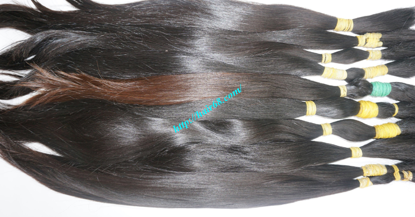 vietnamese virgin hair 10