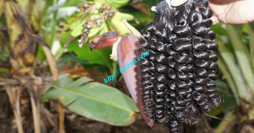 10 inch Cheap Curly Hair Weave Extensions 6