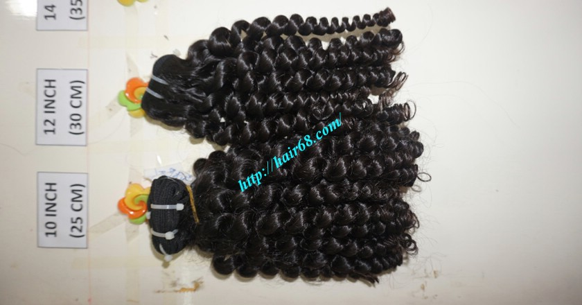 10 inch Remy Curly Weave Extensions – Single Drawn 4