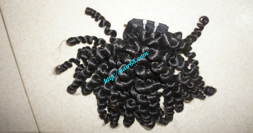 10 inch Remy Curly Weave Extensions – Single Drawn 5