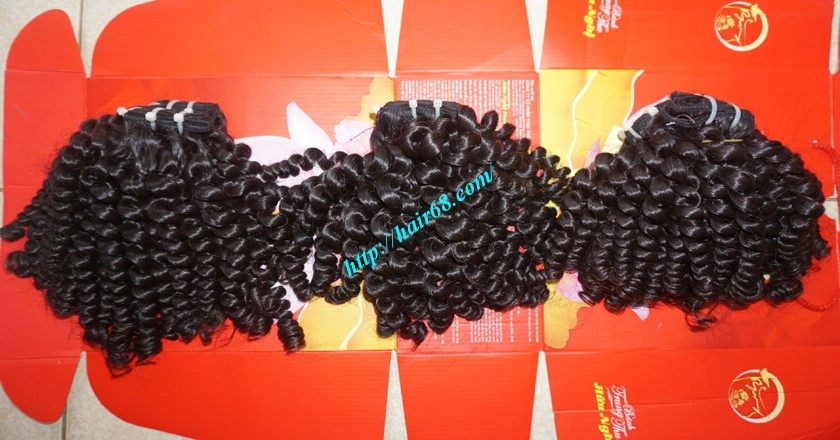 18 inch Curly Weave Hair Vietnam Hair Extensions - Single Drawn 6