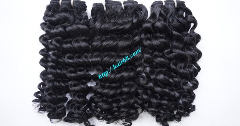 8 inch Remy Curly Weave Human Hair– Single Drawn 2